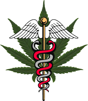 FIREARM TRANSFERS AND MEDICAL/CASUAL MARIJUANA USE:  SOME IMPORTANT THINGS TO CONSIDER